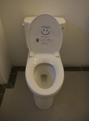 toilet wants an upgrade